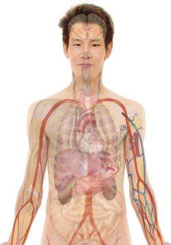 Symptoms of Ketamine Abuse